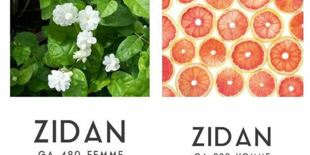Nuevas Creaciones Dúo. Catálogo de Perfume a granel.