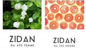 fabricante-de-perfume-a-granel-02122016